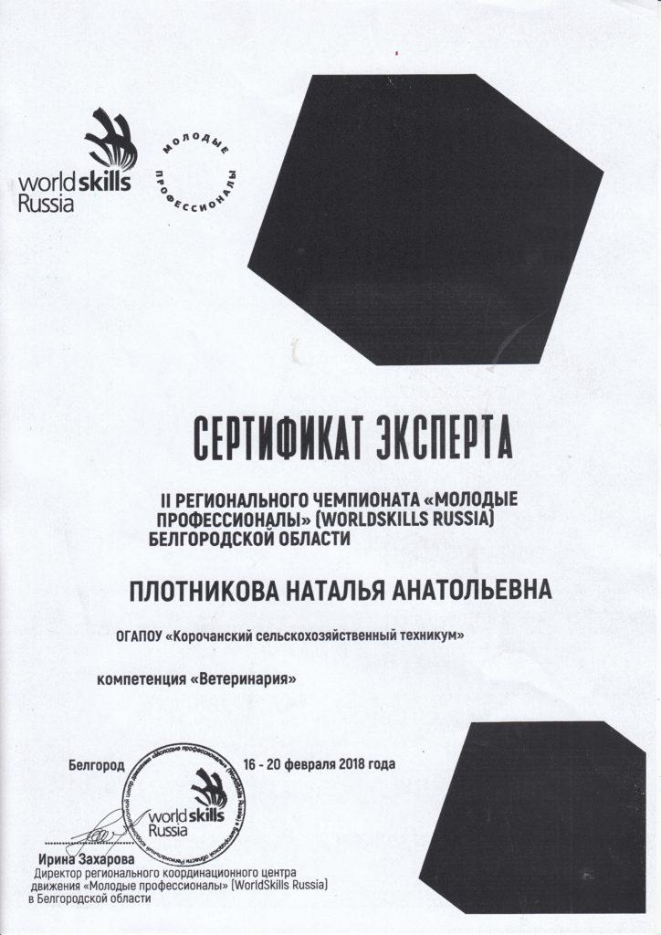 Сертификат эксперта Плотниковой Н.А.