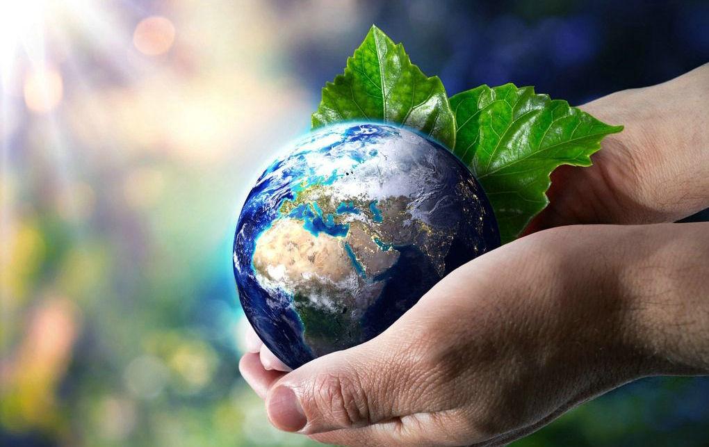 День окружающей среды